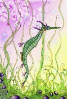 weedy seadragon by dragonflywatercolors
