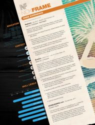 Info Graphic + Traditional - Hybrid Resume by gnaime