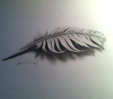 3D feather with video of process by gavinodonnell