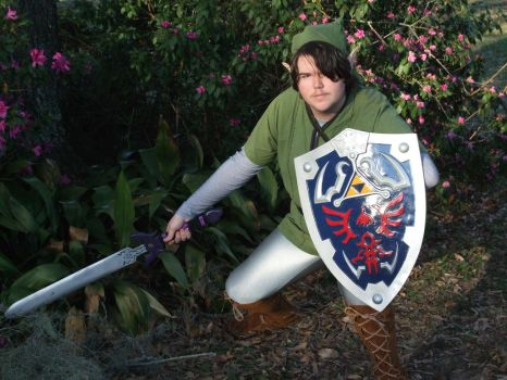 Link Cosplay 3 by linkinspirit95
