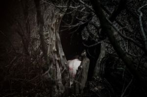 ingested by nature by beyondimpression