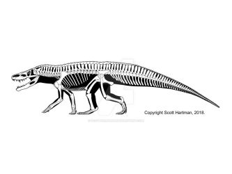 Batrachotomus - the 'typical' Triassic loricatan by ScottHartman