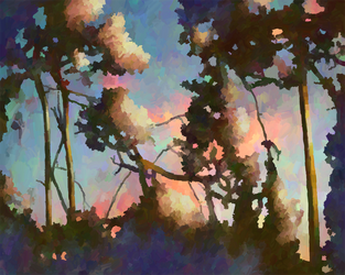 Sunset Trees 2 by Smoozles