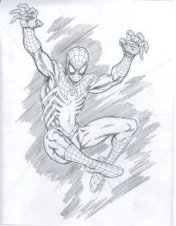 Mixed Up Spider Man by bathill8
