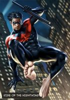 Rise of the Nightwing by Final-Fantaisies