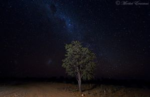 Road to the stars... by MorkelErasmus