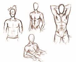 Male body types vol. 1 by Wolans