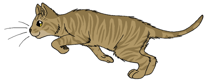 ThunderClan - Thrushtalon by WildpathOfShadowClan