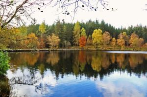At the Glencoe Lochan by MaresaSinclair