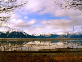 Railroad Alaska by ady734
