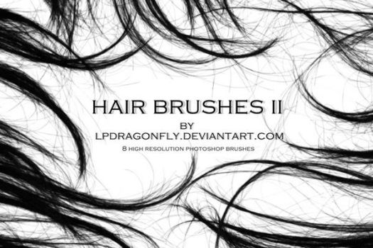 hair brushes II by ivadesign