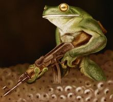 The Frogfather by Benco42
