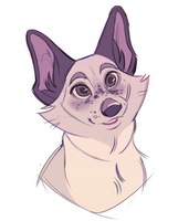 a woof by miraclespout