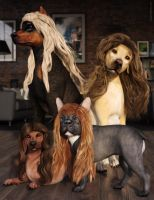 The Hair Club for Dogs by JoePingleton