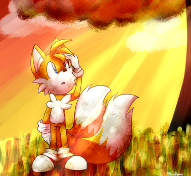 .:Sunset:. by MacaHeroes