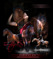 Firefly CS - Commission by arrsistable