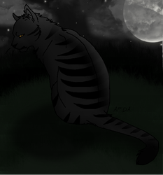 Darkstripe by Harryn53012