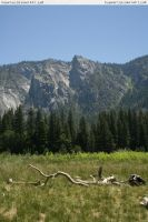 Yosemite 17 meadow by RoonToo