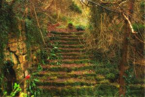 The Old Steps... by TheBaldingOne