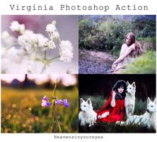 Virginia Photoshop Action (DOWNLOAD FOR FREE) by Heavensinyoureyes