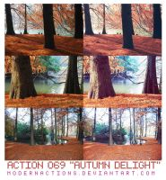 ACTION 069 'AUTUMN DELIGHT' by ModernActions