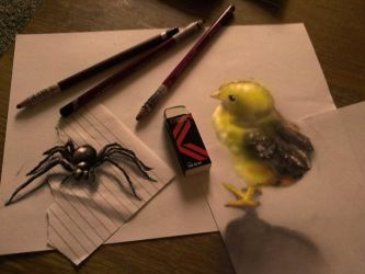 The Spider and the Chick by RamonBruin