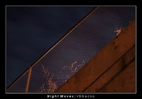 Night Moves by vbgecko