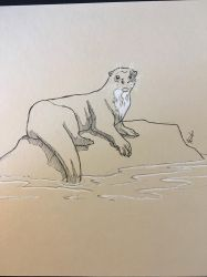 Inktober day 14 - Giant otter  by DRGNFL