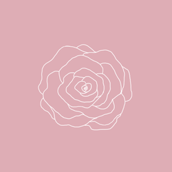 Rose by Norsea