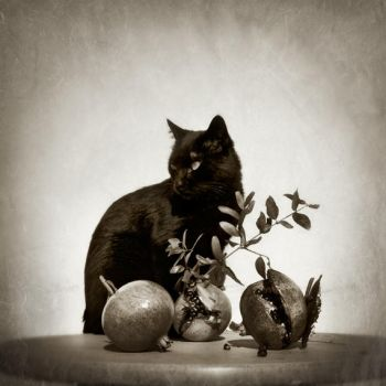 portrait with fruits... by Kaarmen