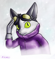Blinx The Time Sweeper: Picaro by FrenchFluff