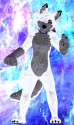 Fluffy SnowTheDerpyWolf (2/2) by InsanityAnimations