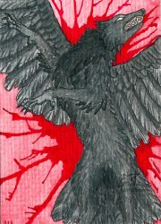 Raven Rage (ACEO) by Woodswallow