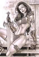 Red Sonja with copic markers by wgpencil