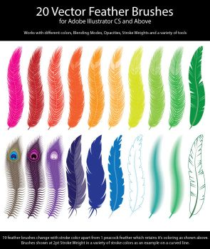 20 Vector Feather Brushes for Adobe Illustrator by ChewedKandi