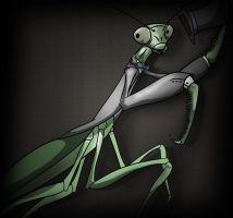 Dapper Mantis by Royalty-Doc