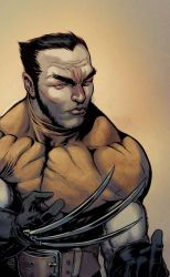 Wolverine by Maiolo