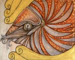The Chambered Nautilus by Velvet-Dragon