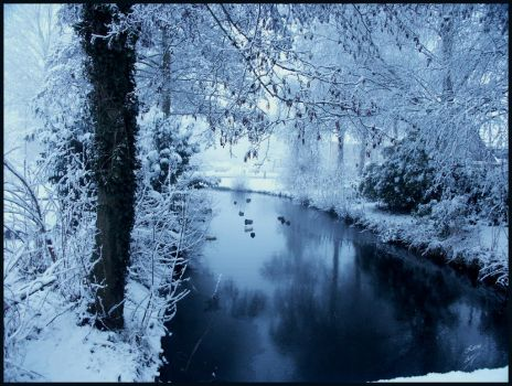 snow by Buble