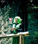 Saria - Waiting For The Hero by Dandy-chaan