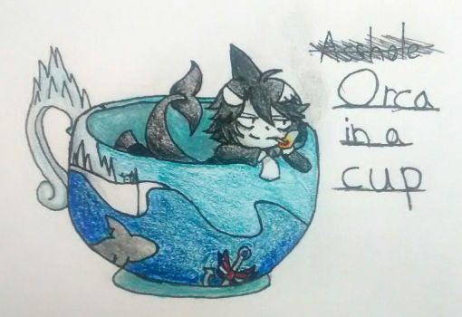 Orca in a Cup by theXVthmember