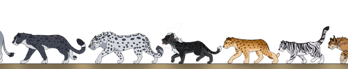 Some Big Cat OCs by leafstep