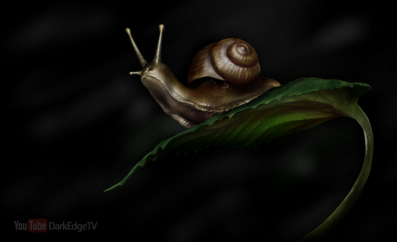Playing with Sculptris #8 - Snail on a Leaf by Rebecca1208