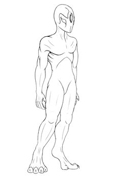 Alrin anatomy by PAINratio