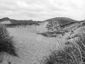Dunes of Wenningstedt by zeitglanz