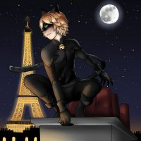 Chat Noir by kiba-chan27
