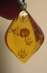 Paws Pendant by fairyfrog