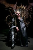 Thranduil. King of Mirkwood Realm  2 by the-ALEF