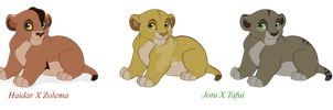 Couples 2H and 4E cubs by VampyKiss
