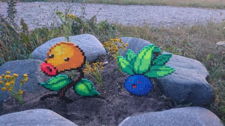 Pokemon #59-60 - Bellsprout and Oddish by MagicPearls
